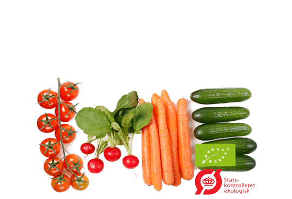 Økologisk snacks, øko snack, sunde snack, sundsnack