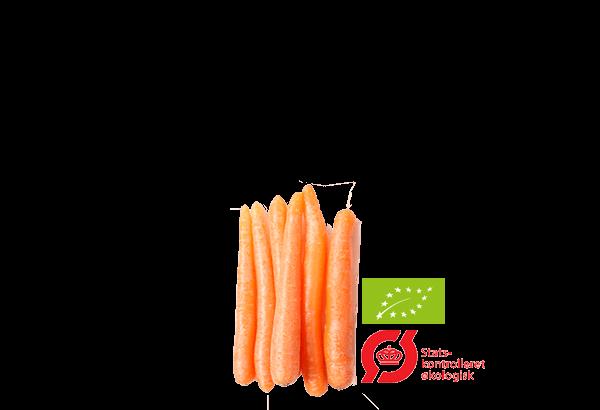 Økologisk snack, Økologisk sund snack, Sundsnack, Snackgulerødder, snack gulerødder, snack gulerod
