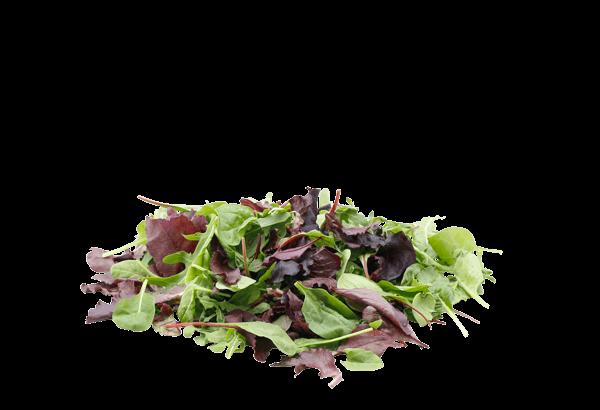salat, mix, salatmix, salat mix, salatblanding, salat blanding, salatpose, salat pose, dansk salat, dansk salatmix, baby salat, baby salat mix, baby salatblanding