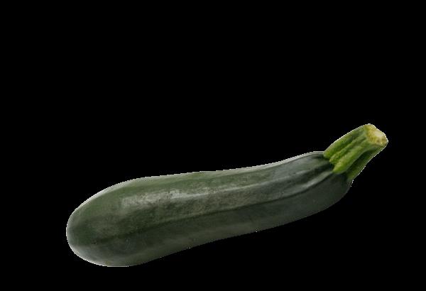 Squash, Courgette, zucchini