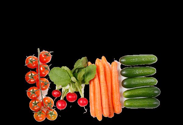 SnackGrønt, sundsnack, sunde snacks, grønt snack, topping, firmafrugt, frugtordning