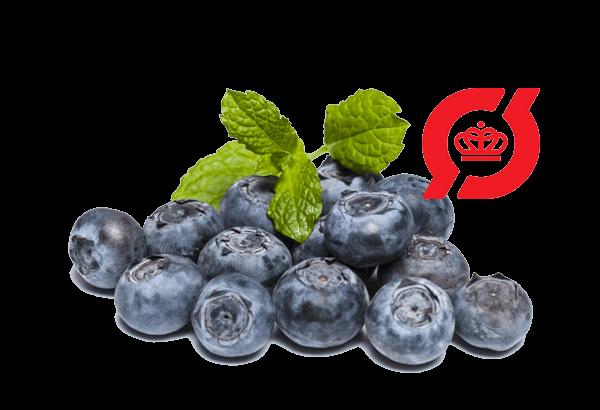 Økologisk blåbær, blåbær, blå bær, øko blåbær, øko blå bær, bær, danske blåbær, Økologiske blåbær, øko blåbær, blå bær, blåbær, danske blåbær, svenske blåbær, friske blåbær, nye blåbær, blåbær køb, blåbær billig, blåbær på nettet