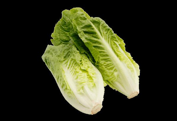 Hjertesalat, hjerte salat, romainesalat, mini romaine, miniromaine, caesarsalat, frisk salat, sprød salat